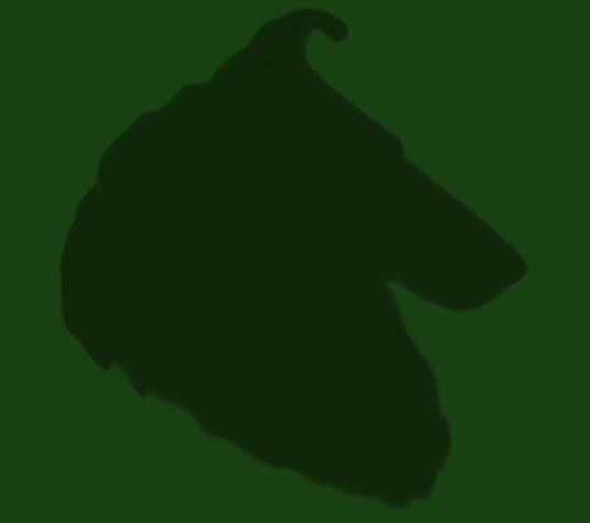 kennel weatherwax collie